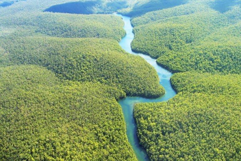 Entidades pedem veto de MPs que reduzem áreas protegidas na Amazônia