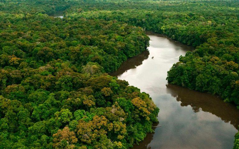STF começa a julgar medida provisória que alterou limites de parques na Amazônia
