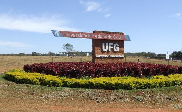 UFG abre 1,2 mil vagas de cursos a distância gratuitos para 2019