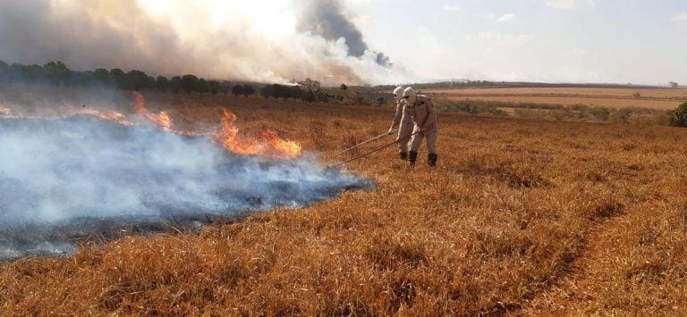 Bombeiros combatem incêndio na região de Santa Helena de Goiás