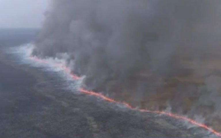 Parque Nacional das Emas tem mais de 6 mil hectares destruídos pelo fogo