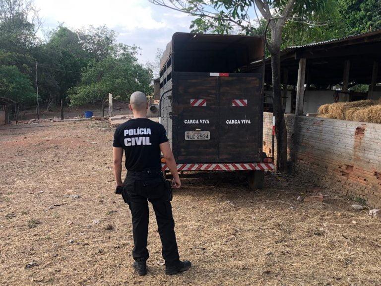 Operação investiga roubo de 500 cabeças de gado em Goiás