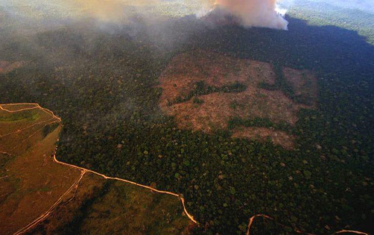 Nestlé deixará de comprar soja produzida em área desmatada da Amazônia